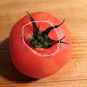 トマトの湯むき