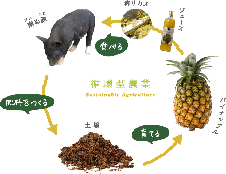 循環型農業の仕組み