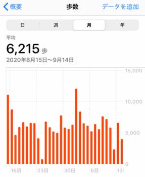 一ヶ月の歩数データ